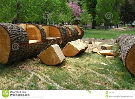 log bench from 30 million high quality