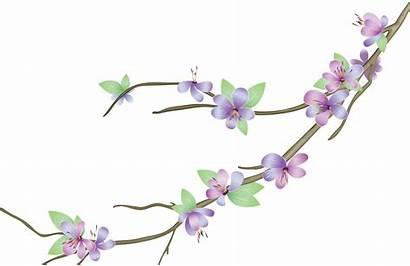 Flower Vectors Vector Flowers Purple Transparent Various