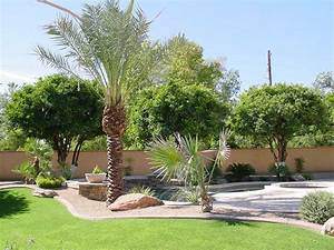 Large backyard design with desert landscaping themes for Landscape backyard design