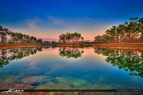 sunrise  long pine key lake everglades florida royal