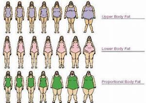 Body Shape & Weight Loss - Part 1