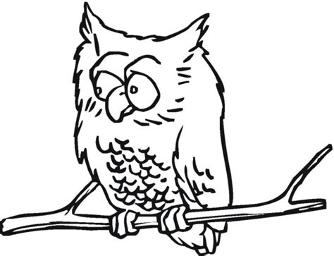 Hard Owl Coloring Pages Images & Pictures
