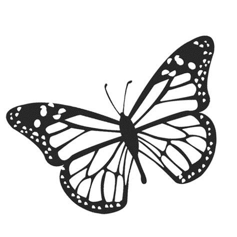 immagini colorate bellissime 17 disegni farfalle da colorare e stare