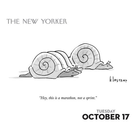 cartoons from the new yorker desk calendar 9781449476540