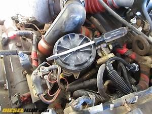 7 3l Power Stroke Fuel Filter Replacement Procedures