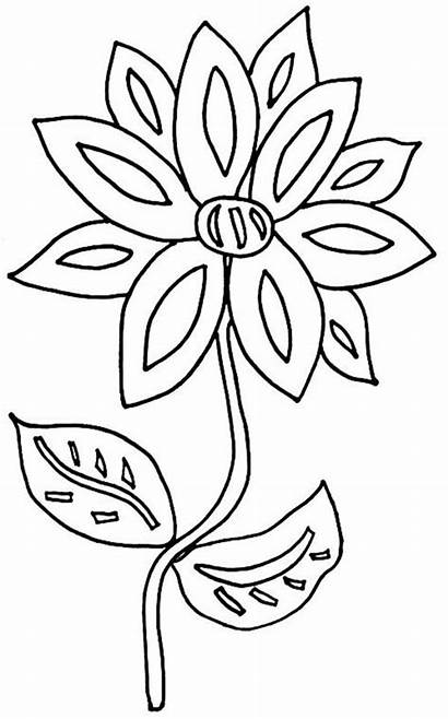 Coloring Flower Yard Pages Flowers