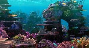 Finding Nemo Backgrounds