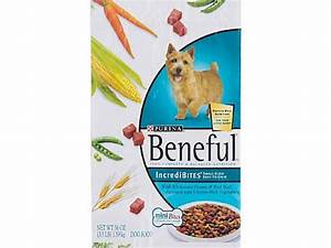 Popular dog food lethal to pets class action lawsuit for Common dog food