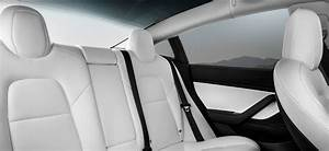 Tesla Model 3 Black Exterior White Interior - Outfit Ideas for You