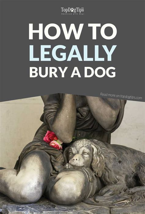 How To Bury A In The Backyard by How To Bury A Legally When Your Canine Companion