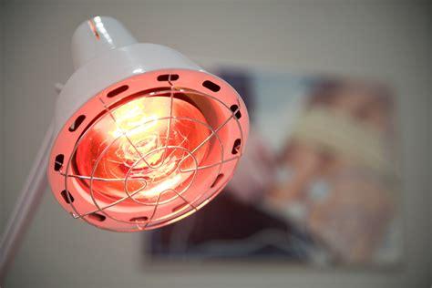 heat l light bulb how to heat a dog house with a light bulb heat l