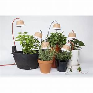 Jardiniere Interieur : lampe pour jardini re d 39 int rieur design cynara sign bulbo ~ Melissatoandfro.com Idées de Décoration