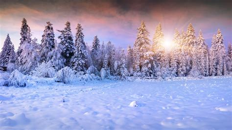 22 winter aesthetic wallpapers