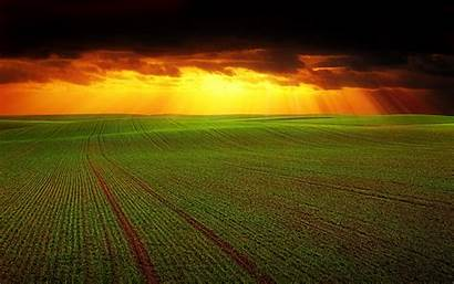 Field Agriculture Horizon Clouds 4k Background Grass