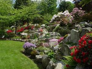 plante de rocaille conseils d39amenagement du jardin et photos With jardin en pente que faire 4 amenager un jardin de montagne avec une rocaille
