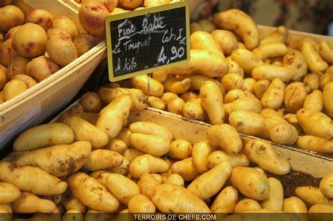 produit potager pomme de terre amandine vitelotte ch 233 rie