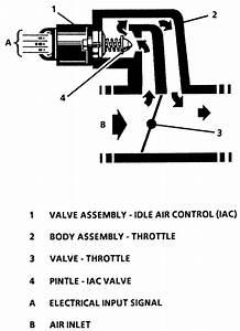 Wiring Manual Pdf  2004 Kia Engine Valve Diagram