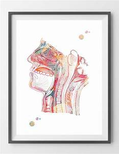 Respiratory System Watercolor Print Nose Mouth Throat