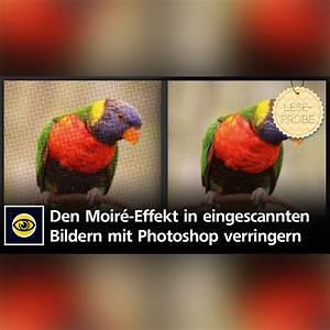 Moiré Effekt : so minimieren sie mit photoshop den moir effekt in eingescannten bildern creative aktuell ~ Yasmunasinghe.com Haus und Dekorationen