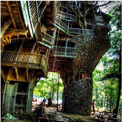ridiculously cool tree houses