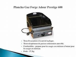 Barbecue Gaz Et Charbon : barbecue stocker de barbecue gaz barbecue weber barbecue ~ Dailycaller-alerts.com Idées de Décoration