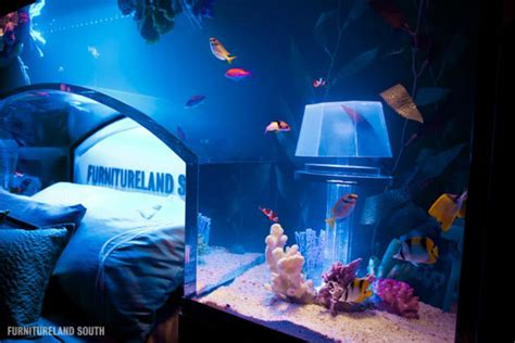 massive custom  seawater aquarium headboard