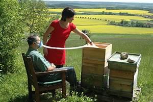 Holz Wachsen Bienenwachs : holz wachsen holz wachsen in 7 schritten so geht s mit obi holz wachsen in 7 einfachen ~ Orissabook.com Haus und Dekorationen