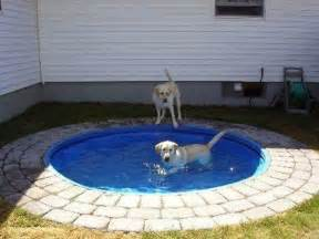 Molded Plastic Garden Furniture by Build A Diy Dog Pool To Keep Your Pup Cool Healthy Paws