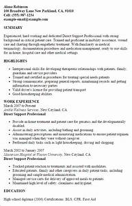 Professional direct support professional templates to for Direct support professional resume