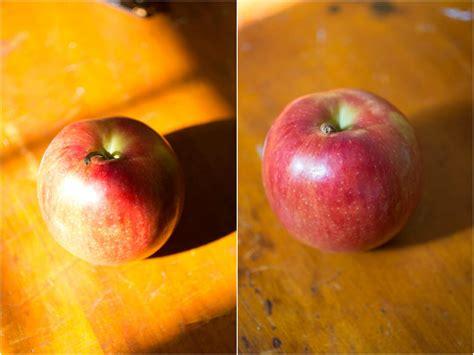 eats guide  food photography  eats