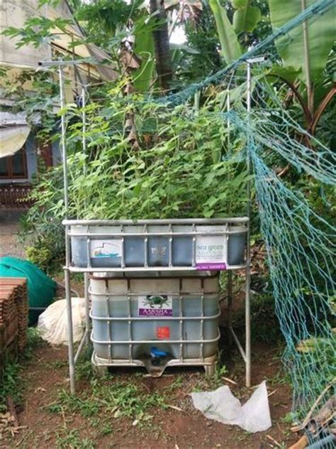 agriculture system aquaponics systems manufacturer