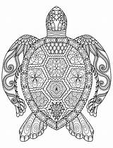 Mandala Coloring Pages Animal Sheets Thousand Through sketch template