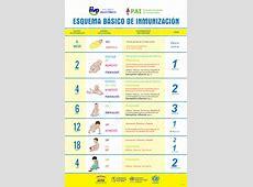 OPSOMS Rep Dom Indicadores Básicos de Salud