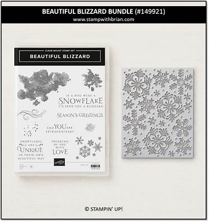 Blizzard Stampin Bundle Card Stampwithbrian Cards Miss
