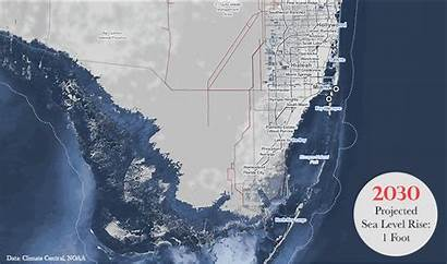 Sea Rise Level Rising Florida Climate Projections