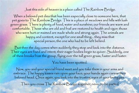 rainbow bridge cthar