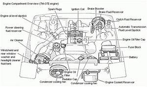School Bus Engine Compartment Diagramarchitectural Wiring