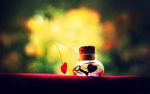 Cute Images / Cute HD Wallpaper
