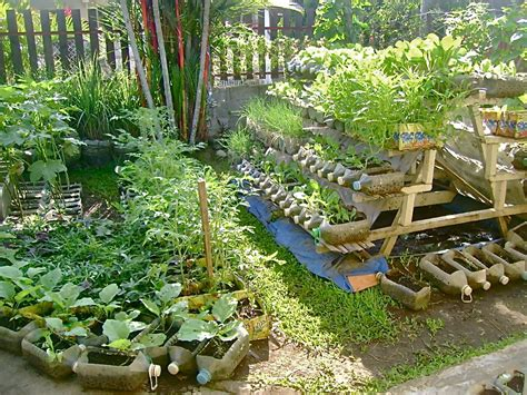 Garden Solutions by Solution For The Hunger Problem Food Production At Home