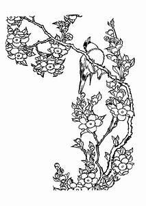 Dessin Fleur De Cerisier Japonais Noir Et Blanc : coloriage oiseau et fleur de cerisier ~ Melissatoandfro.com Idées de Décoration