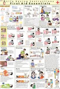 CPR First Aid Charts Printables
