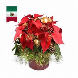 Weihnachten In Mexiko : weihnachten rund um die welt ~ Indierocktalk.com Haus und Dekorationen