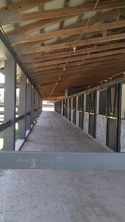 holly hill farms horse boarding farm  ocala florida