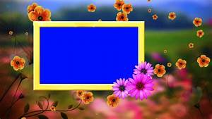 HD Wedding Frame Blue Background & Fallen Flowers Animated ...