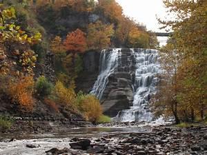 Ithaca NY