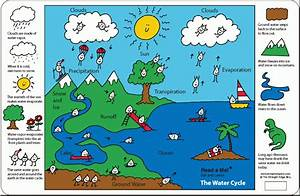 Teddy U0026 39 S Science Lab  The Water Cycle