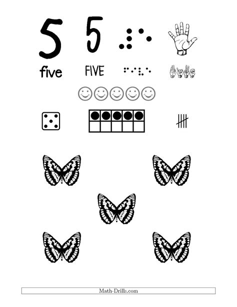 number  recognition poster   butterfly theme number