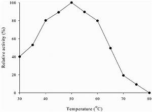 Effect Of Temperature On Enzyme Activity Of The Purified