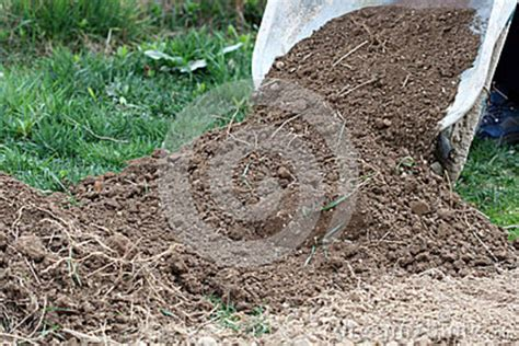 preparing soil for garden stock photo image 39121829