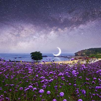Scenery Surreal Beach Wallpapers 5k 2560 1600